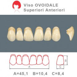 Denti Resina Anteriori Superiori - viso Ovoidale 37
