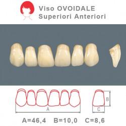 Denti Resina Anteriori Superiori - viso Ovoidale 48