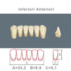 Denti Resina Anteriori Inferiori - 05