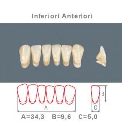 Denti Resina Anteriori Inferiori - 06