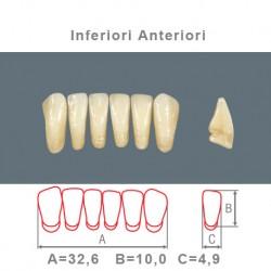 Denti Resina Anteriori Inferiori - 09