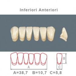 Denti Resina Anteriori Inferiori - 011