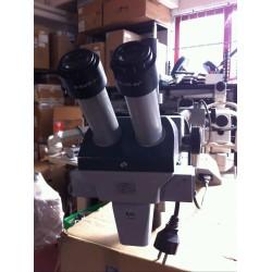Stereomicroscopio ZEISS JENA