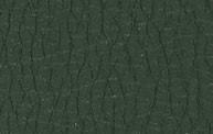 H801 Verde bosco