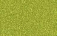 L017 Verde