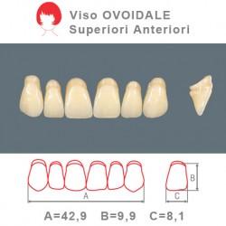 Denti Resina Anteriori Superiori - viso Ovoidale 33