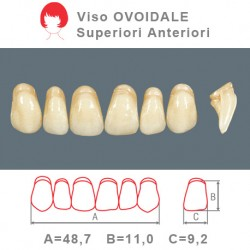Denti Resina Anteriori Superiori - viso Ovoidale 49