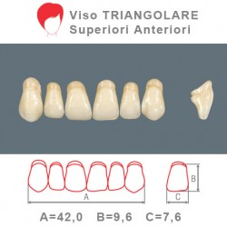 Denti Resina Anteriori Superiori - viso Triangolare 13
