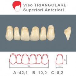 Denti Resina Anteriori Superiori - viso Triangolare 15