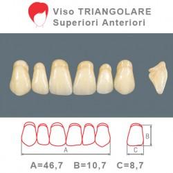 Denti Resina Anteriori Superiori - viso Triangolare 18