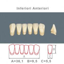 Denti Resina Anteriori Inferiori - 08